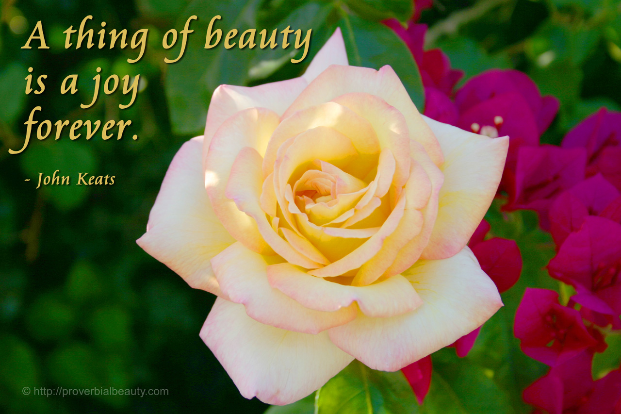 a thing of beauty by john keats A thing of beauty by john keats title  a thing of beauty = something pretty, a work of art, or something unexplainable imagery while outside forces seem to work against us, nature works with us.