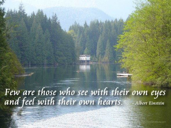Few are those who see with their own eyes and feel with their own hearts. - Albert Einstein