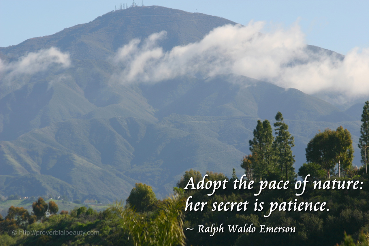 full hd nature quotes emerson android desktop hd emerson quotes nature quotesgram