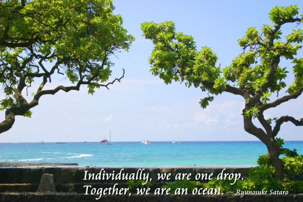 Individually we are one drop. Together we are an ocean. ~ Ryunosuke Sataro