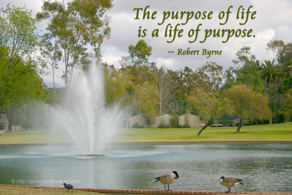 The purpose of life is a life of purpose. ~ Robert Byrne
