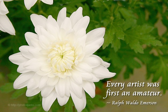 Every artist was first an amateur. ~ Ralph Waldo Emerson