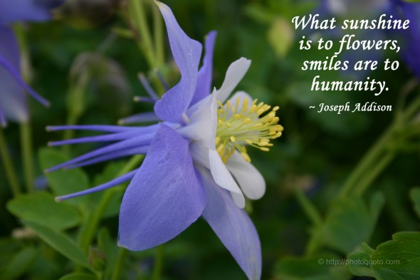 What sunshine is to flowers, smiles are to humanity. ~ Joseph Addison