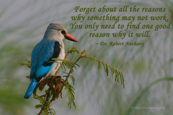 Forget about all the reasons why something may not work. You only need to find one good reason why it will. ~ Dr. Robert Anthony