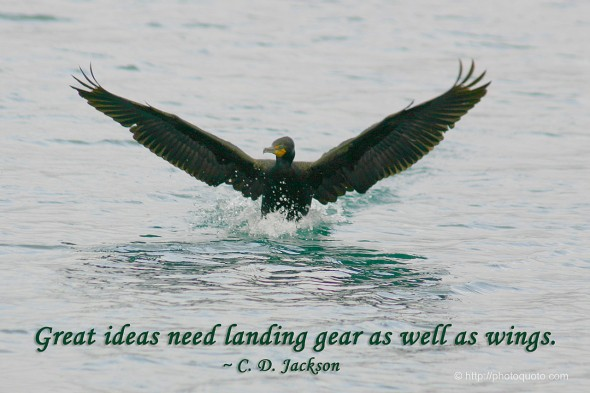 Great ideas need landing gear as well as wings. ~ C. D. Jackson