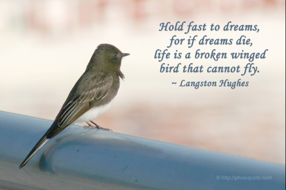 Hold fast to dreams,  for if dreams die,  life is a broken winged  bird that cannot fly. ~ Langston Hughes