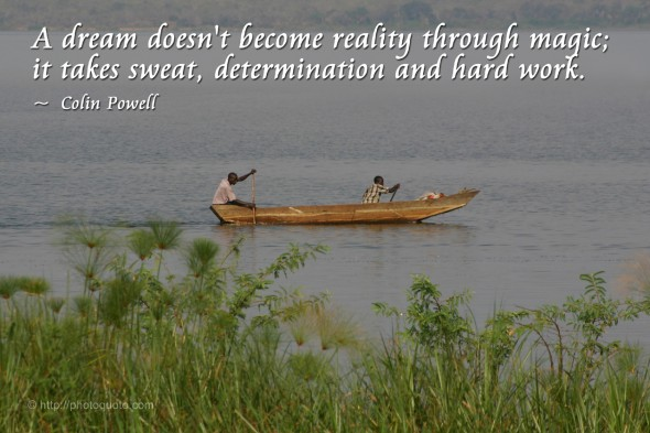 A dream doesn't become reality through magic; it takes sweat, determination and hard work. ~ Colin Powell