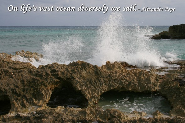 On life's vast ocean diversely we sail. ~ Alexander Pope