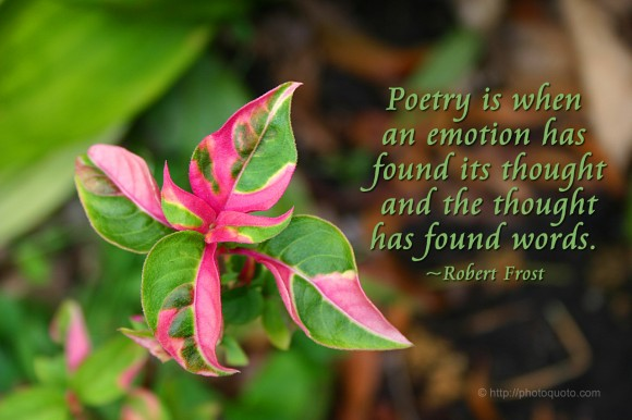 Poetry is when an emotion has found its thought and the thought has found words. ~ Robert Frost
