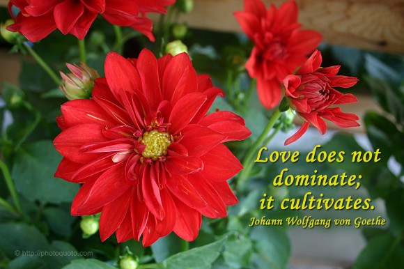 Love does not dominate; it cultivates. ~ Johann Wolfgang von Goethe