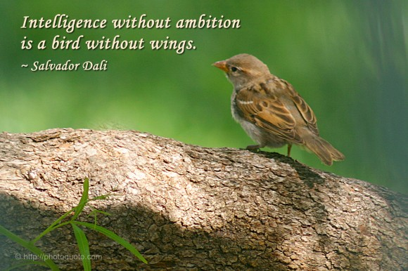 Intelligence without ambition is a bird without wings. ~ Salvador Dali