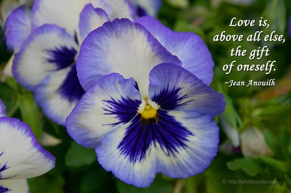 Love is, above all, the gift of oneself. ~ Jean Anouilh