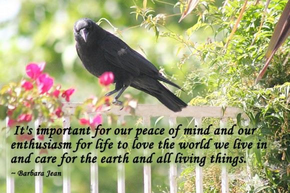 It's important for our peace of mind and our enthusiasm for life to love the world we live in and care for the earth and all living things. ~ Barbara Jean