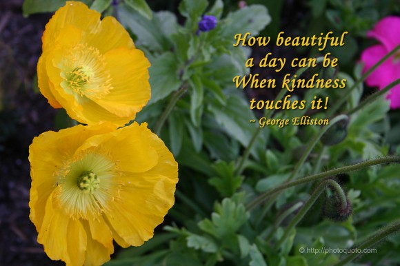 How beautiful a day can be when kindness touches it. ~ George Elliston