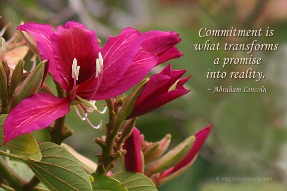 Commitment is what transforms a promise into reality. ~ Abraham Lincoln