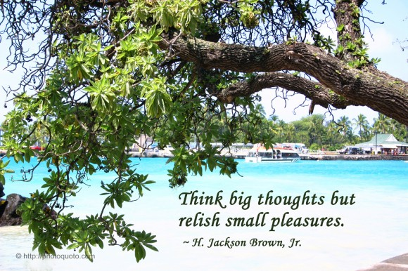 Think big thoughts but relish small pleasures. ~ H. Jackson Brown, Jr.