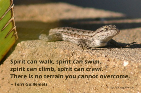 Spirit can walk, spirit can swim, spirit can climb, spirit can crawl. There is no terrain you cannot overcome. ~ Terri Guillemets