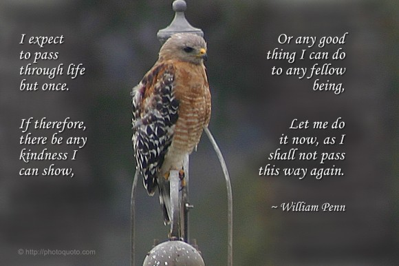 I expect to pass through life but once. If therefore, there be any kindness I can show, or any good thing I can do to any fellow being, let me do it now, as I shall not pass this way again. ~ William Penn