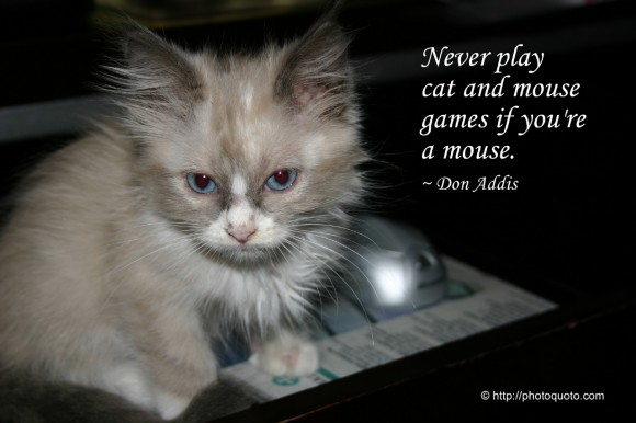 Never play cat and mouse games if you're a mouse. ~ Don Addis