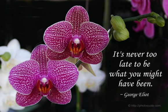 It's never too  late to be  what you might  have been. ~ George Eliot