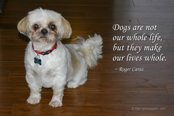 Dogs are not our whole life, but they make our lives whole. ~ Roger Caras