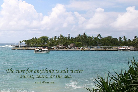 The cure for anything is salt water -- sweat, tears, or the sea. ~ Isak Dinesen