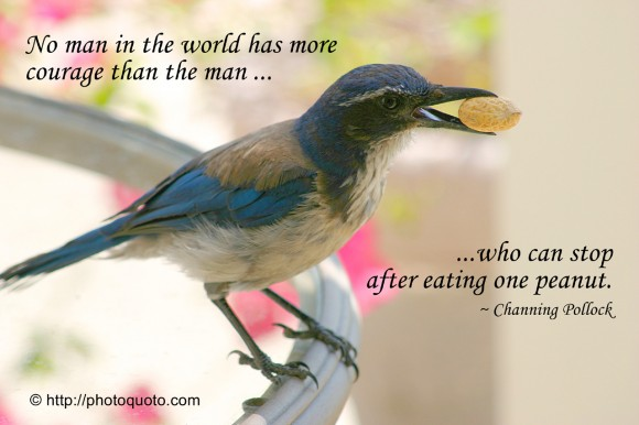 No man in the world has more courage than the man who can stop after eating one peanut.  ~ Channing Pollock
