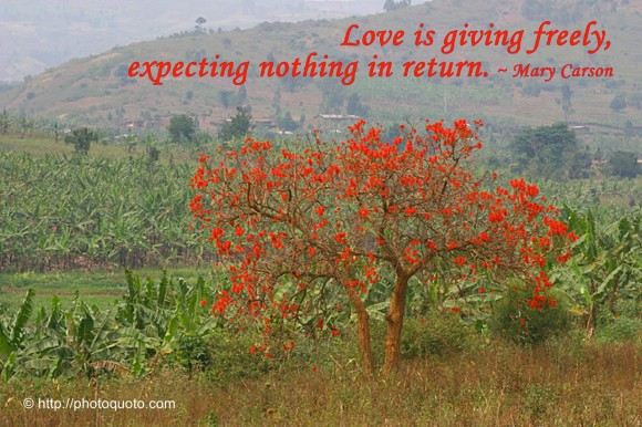 Love is giving freely, expecting nothing in return. ~ Mary Carson