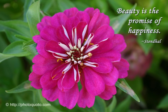 Beauty is the promise of happiness. ~ Stendhal