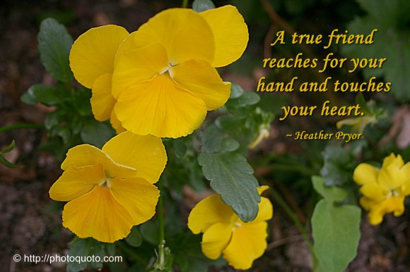 A true friend reaches for your hand and touches your heart. ~ Heather Pryor