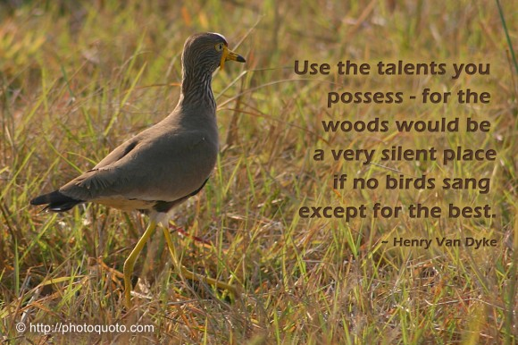 Use the talents you possess - for the woods would be a very silent place if no birds sang except for the best. ~ Henry Van Dyke