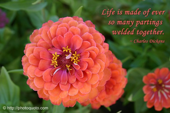 Life is made of ever so many partings welded together. ~ Charles Dickens