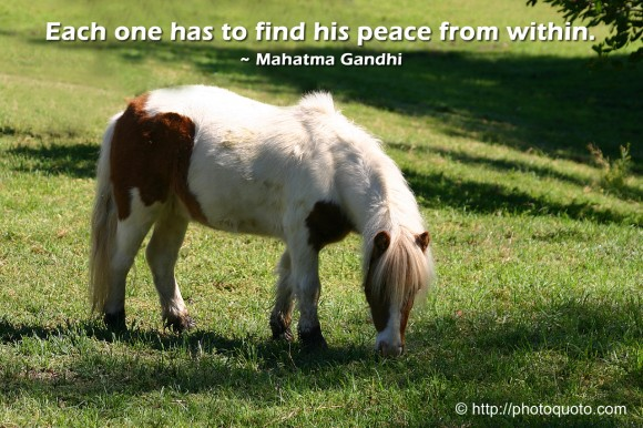 Each one has to find his peace from within. ~ Mahatma Gandhi