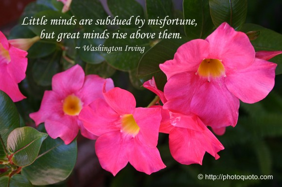 Little minds are subdued by misfortune, but great minds rise above them. ~ Washington Irving