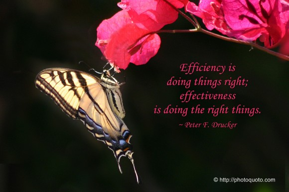 Efficiency is doing things right; effectiveness is doing the right things. ~ Peter F. Drucker