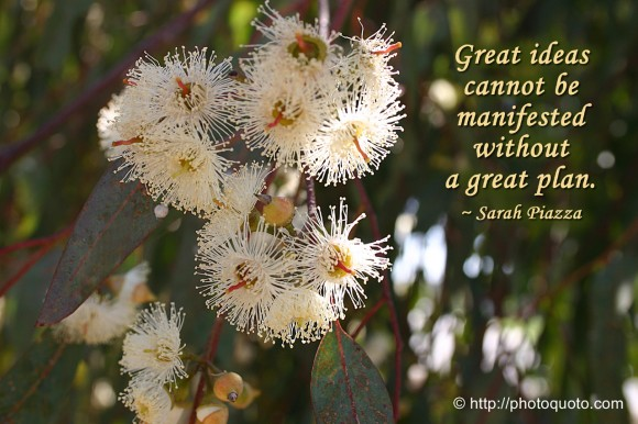 Great ideas cannot be manifested without a great plan. ~ Sarah Piazza