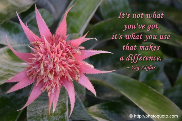 It's not what you've got, it's what you use that makes a difference. ~ Zig Ziglar