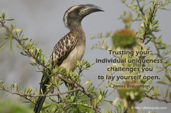 Trusting your individual uniqueness challenges you to lay yourself open. ~ James Broughton