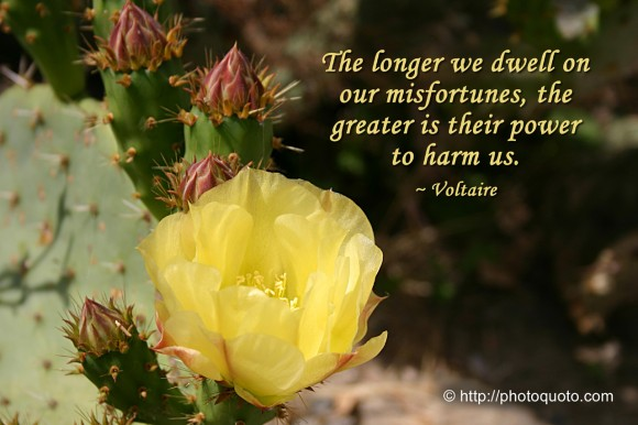 The longer we dwell on our misfortunes, the greater is their power to harm us. ~ Voltaire