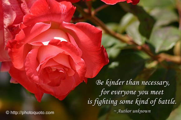 Be kinder than necessary, for everyone you meet is fighting some kind of battle. ~ Author unknown