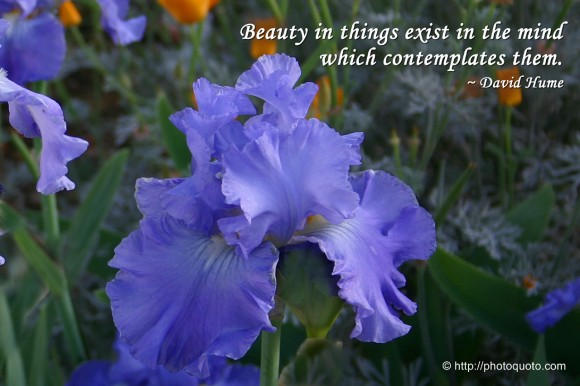 Beauty in things exist in the mind which contemplates them. ~ David Hume