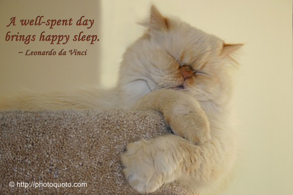 A well-spent day brings happy sleep. ~ Leonardo da Vinci