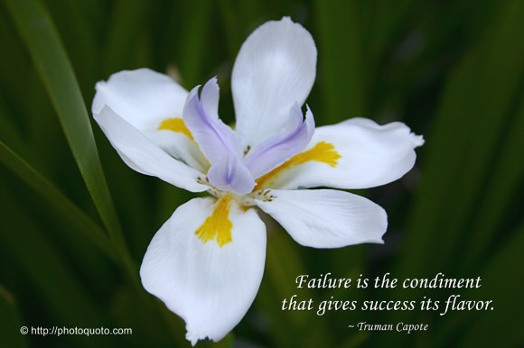 Failure is the condiment that gives success its flavor. ~ Truman Capote