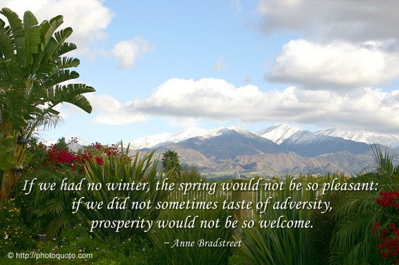 If we had no winter, the spring would not be so pleasant: if we did not sometimes taste of adversity, prosperity would not be so welcome. ~ Anne Bradstreet