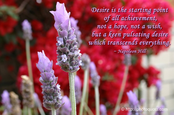Desire is the starting point of all achievement, not a hope, not a wish, but a keen pulsating desire which transcends everything. ~ Napoleon Hill