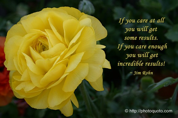 If you care at all you will get some results. If you care enough you will get incredible results! ~ Jim Rohn
