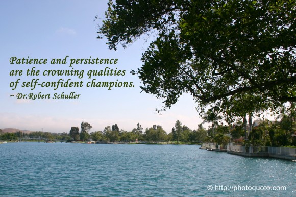 Patience and persistence are the crowning qualities of self-confident champions. ~ Dr.Robert Schuller