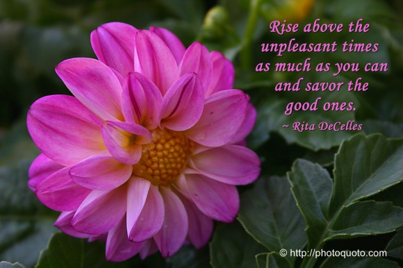 Rise above the unpleasant times as much as you can and savor the good ones. ~ Rita DeCelles