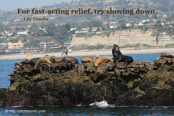 For fast-acting relief, try slowing down. ~ Lily Tomlin