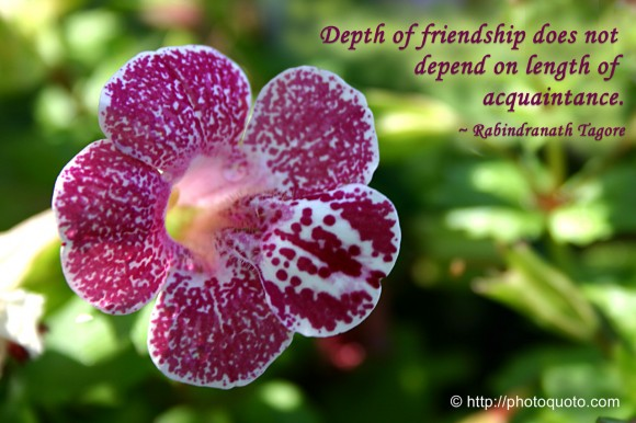 Depth of friendship does not depend on length of acquaintance. ~ Rabindranath Tagore